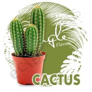 jf-cactus